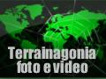 Terrainagonia-media